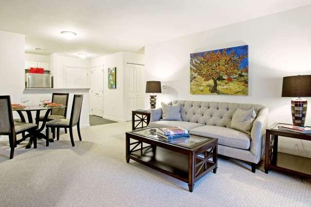 Summit At Saratoga Living Room